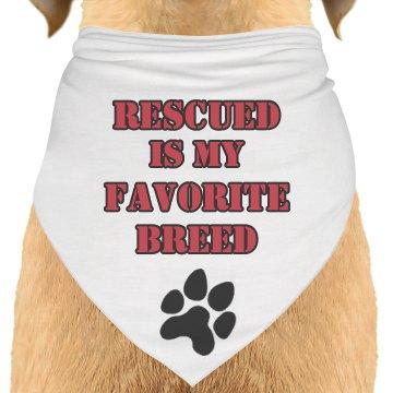 DHO Dog Bandana Rescued