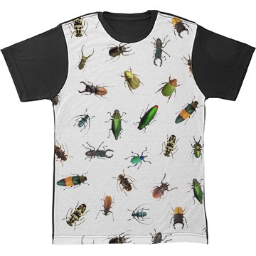 Different Real Bugs Pattern