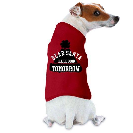 Dog Christmas Shirt funny