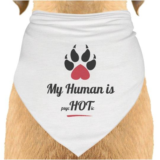 Dog Scarf Human Hot