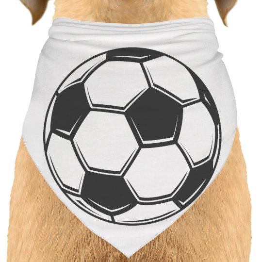 dog soccer