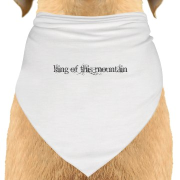 Doggie wear