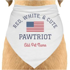 Patriotic July 4th Pet