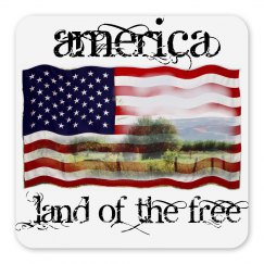Land of the Free magnet