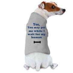 You May Pet Me
