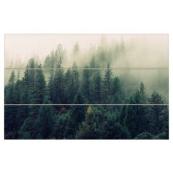 Misty Forest Photo Wood Wall Art