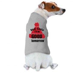 Dog - I'll be good tomorrow
