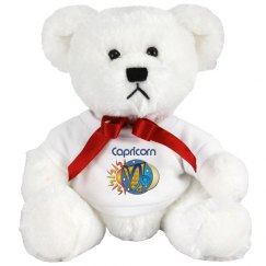 Capricorn Teddy Bear