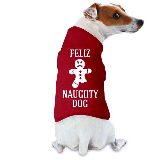 Feliz Naughty Dog