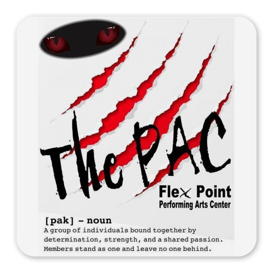 Flex Point Company Magnet