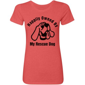 Happily Owned Rescue Dog