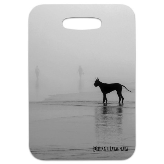 Have you seen my human?  Luggage tag