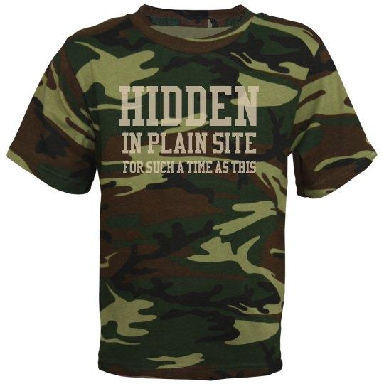 Hidden in plain site updated