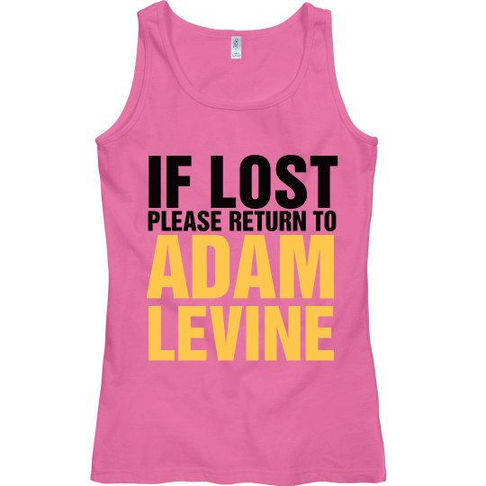 If Lost Return To Levine