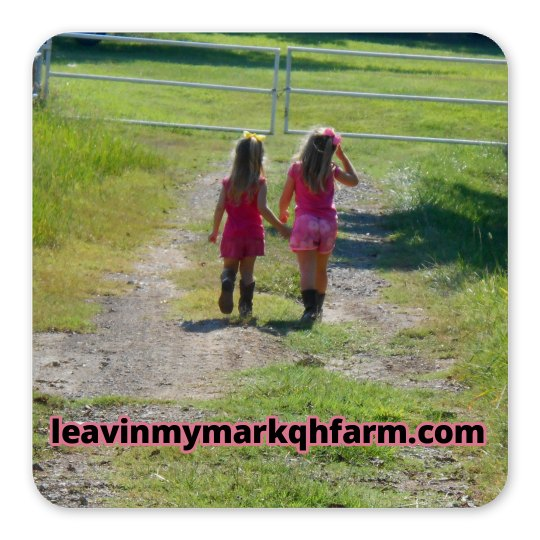 lmm #35  best friends magnet