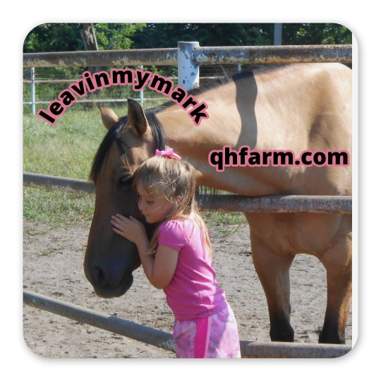 LMM #73 love my horse!