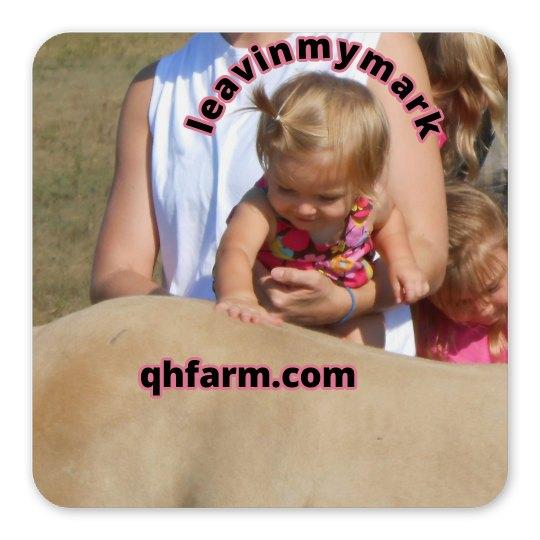 lmm#38  love my horse magnet