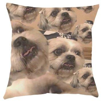 Meatball's Thunderstorm Face Pillow