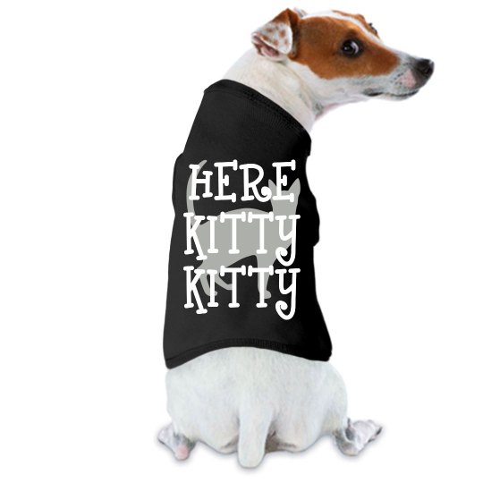 Pet Fashion-Here Kitty
