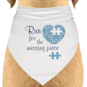 Run For A Missing Piece