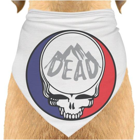 SYF Dead Dog