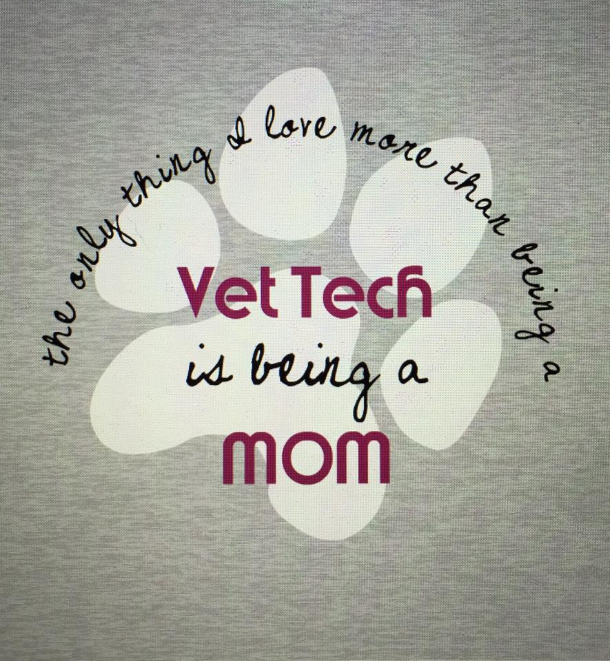 Vet Tech Quotes The Savvy Vet Tech
