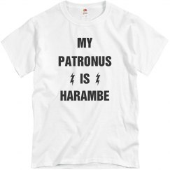My Patronus Is Harambe