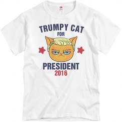 Trumpy Cat For President