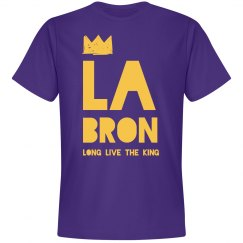LABRON James Los Angeles Basketball