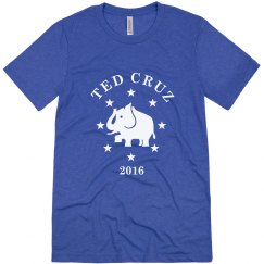 Ted Cruz 2016 Election