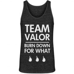 Team Valor Burn Down For What