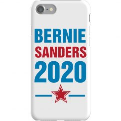 Bernie Sanders 2020 Case