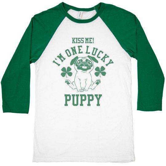 A Lucky Irish Puppy