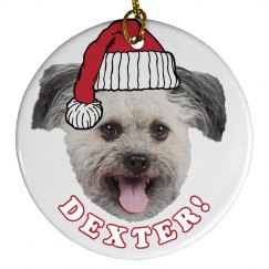 Make Your Dog Santa