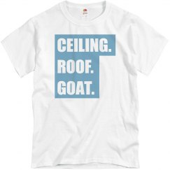 Ceiling Roof Goat Block Text