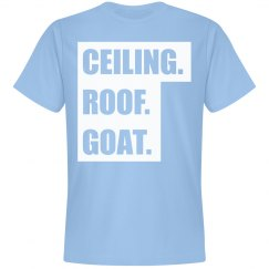 Ceiling Roof Goat North Carolina Blue