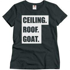 Ceiling Roof Goat Chapel Hill, NC