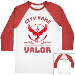 Vintage Metallic Custom Team Valor Raglan