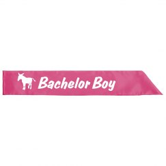 Pink Ass Bachelor Boy