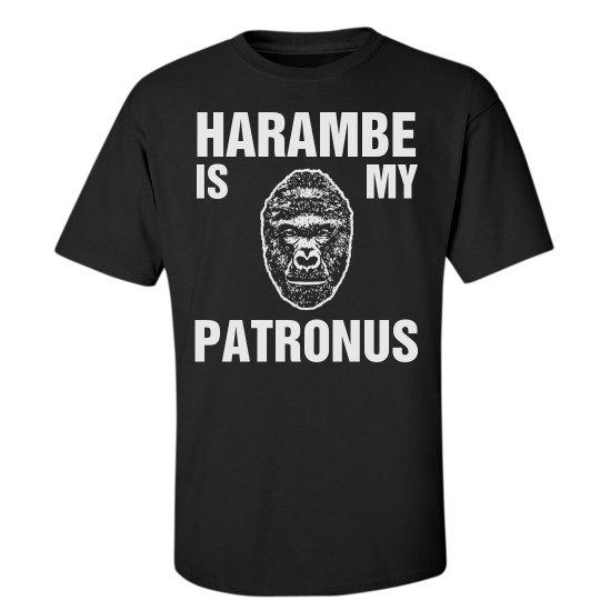 Harambe's Magic Lives On