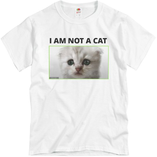 I Am Not A Cat Funny Cat Lawyer Tee