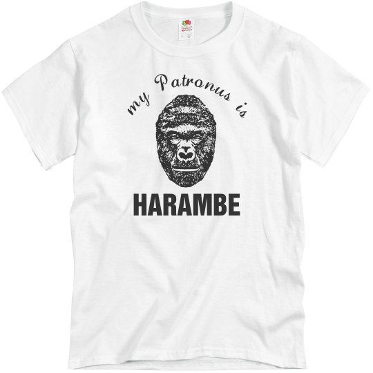 Magical Harambe