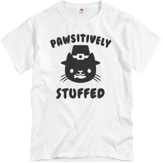 Pawsitively Stuffed Cat