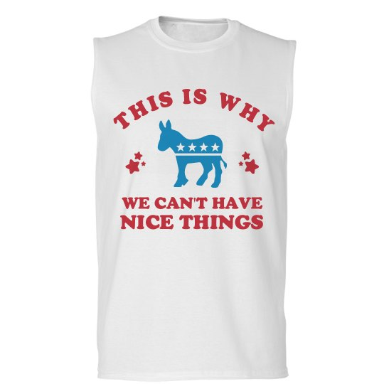 We Can't Have Nice Things Democrats