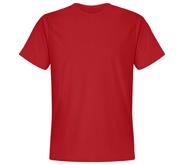Unisex Next Level Premium T-Shirt