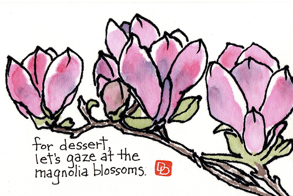 For dessert, let's gaze at the magnolia blossoms