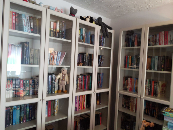 A view of just part of my book collection.
