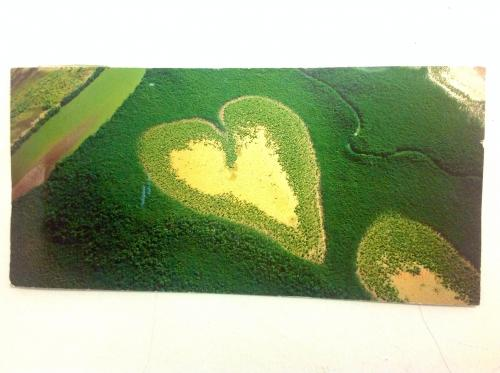 Heart in Voh,French New Caledonia