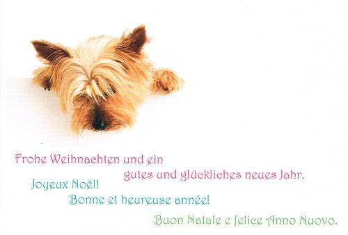 Merry Christmas and Happy New Year! (in German, French and Italian)