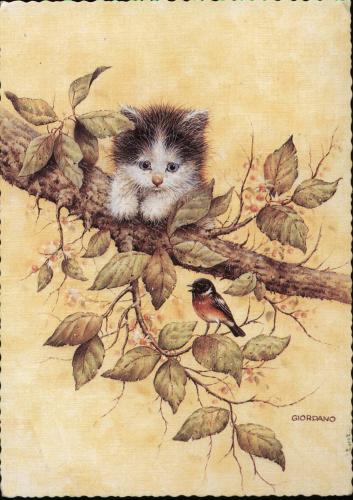 Thanks Mariusz for the cute and sweet cat and bird)))
